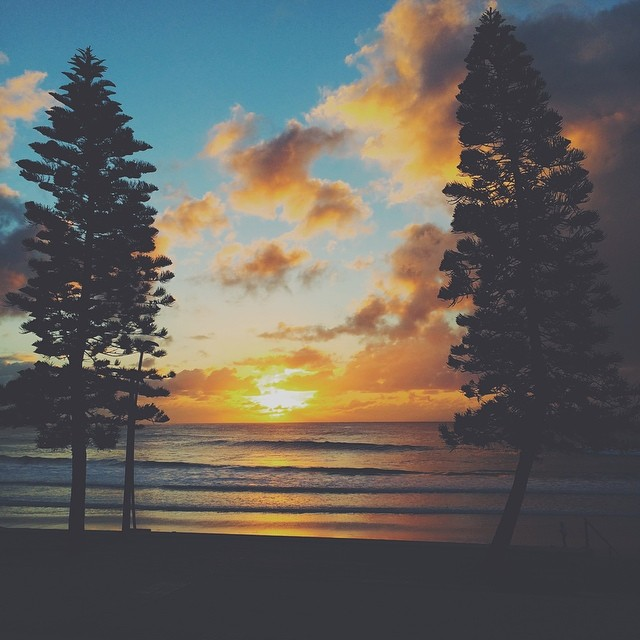 // DEE WHY SUN UP