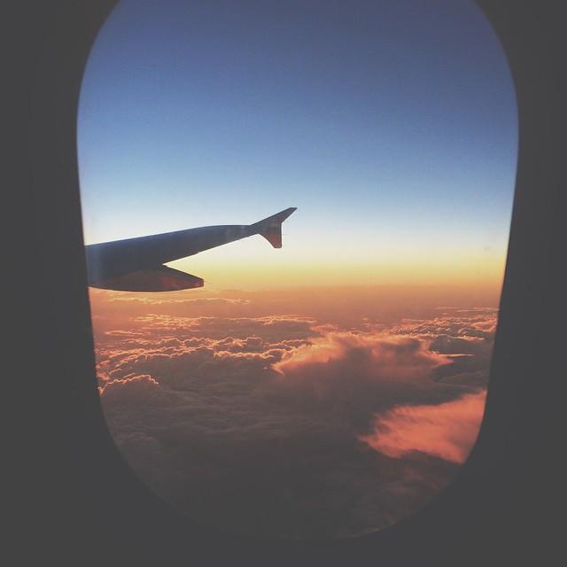 // WING + SKY